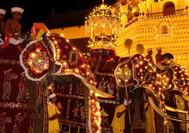 Sri Lanka | Elefanten am Zahntempel