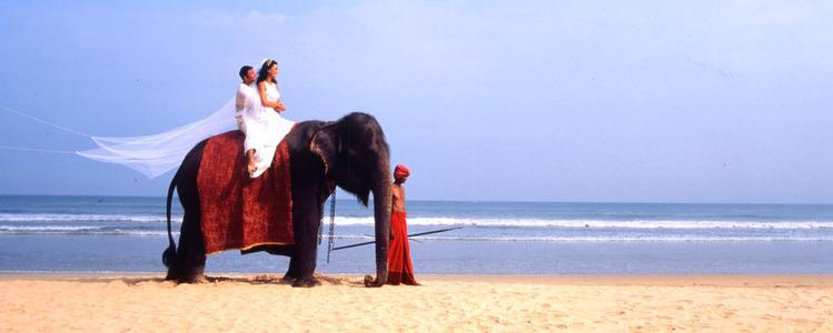 Sri Lanka Urlaub | Hochzeitsreise