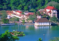 Sri Lanka Urlaub | Lake in Kandy