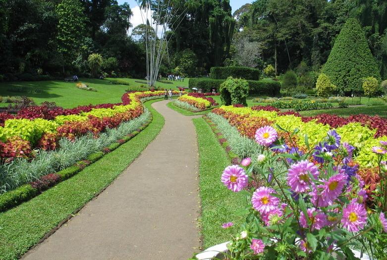 Sri Lanka | Botanischer Garten in Kandy