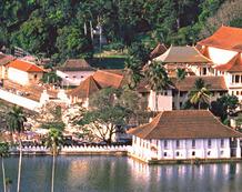 Reise nach Sri Lanka | Kandy
